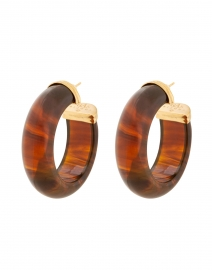 Abalone Tortoise Hoop Earrings