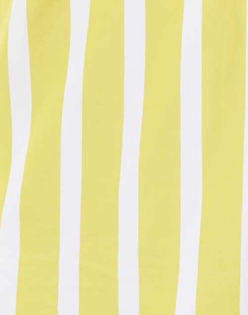 Sara Roka - Nattie Lime Striped Coloblock Poplin Henley Shirt